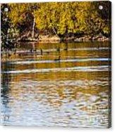 At The Lake-34 Acrylic Print