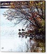 At The Lake-40 Acrylic Print