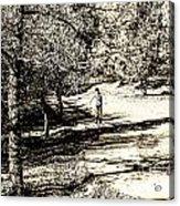 At The Lake-41 Acrylic Print