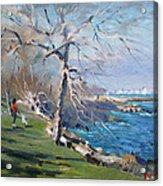 At The Park By Lake Ontario Acrylic Print