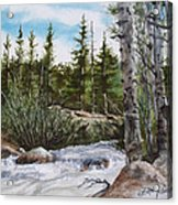 At The Top Of Alberta Falls Acrylic Print
