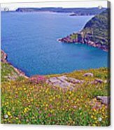 Atlantic Ocean From Signal Hill National Historic Site In Saint John's-nl Acrylic Print