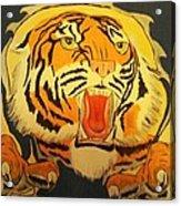 Auburn Tiger Acrylic Print