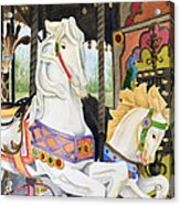 Audubon Carousel Acrylic Print