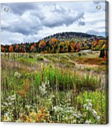 August Fall Colors Flowers And Trees I - West Virginia Acrylic Print
