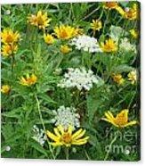 August Wildflowers Acrylic Print