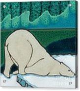 Aurora Borealis Polar Bear Acrylic Print