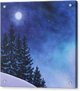 Aurora Borealis Winter Acrylic Print by Cecilia Brendel