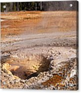 Aurum Geyser In Upper Geyser Basin In Yellowstone National Park Acrylic Print