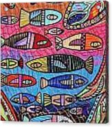 Australia Great Barrier Reef Acrylic Print