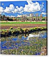 Australian Landscape Acrylic Print