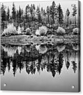 Autumn Reflection Black And White Acrylic Print