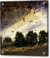 Autum Colors  Earth Water Air Acrylic Print