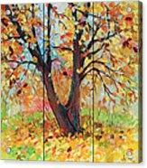 Autumn 1 Acrylic Print