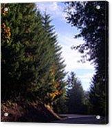 Autumn 12 Acrylic Print