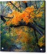 Autumn 4 Acrylic Print