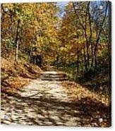 Autumn Afternoons Acrylic Print