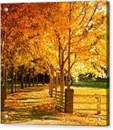 Autumn Alley Acrylic Print