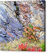 Autumn And Rocks Vertical Acrylic Print