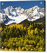 Autumn And Snow Covered Peaks North Acrylic Print