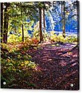 Autumn At Cary Lake Acrylic Print