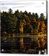 Autumn At It's Finest 2 Acrylic Print