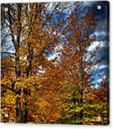 Autumn At Mc Cauley Mountain Acrylic Print