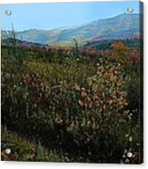 Autumn At Mt Rogers Acrylic Print