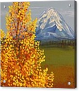 Autumn At Mt Shasta Acrylic Print