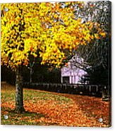 Autumn At Old Mill Acrylic Print