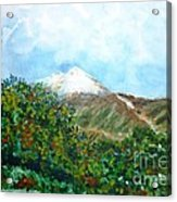 Autumn At The Foot Of Mount Elbrus Acrylic Print