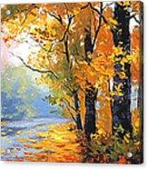 Autumn Backlight Acrylic Print