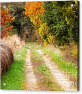 Autumn Beauty On Rural Dirt Road Acrylic Print