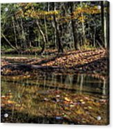 Autumn Beauty Scene Acrylic Print