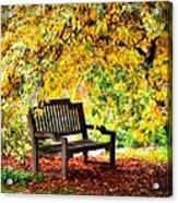 Autumn Bench In The Garden  Acrylic Print