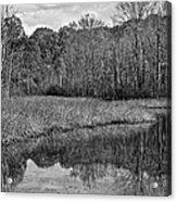 Autumn Black And White Acrylic Print