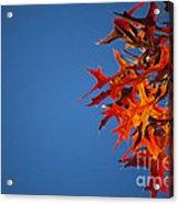 Autumn Blue Acrylic Print