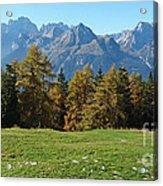 Autumn - Brenta Dolomites Acrylic Print