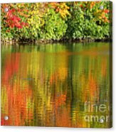Autumn Brilliance Acrylic Print