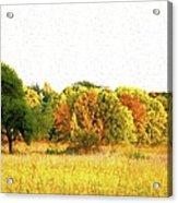 Autumn Canvas Acrylic Print