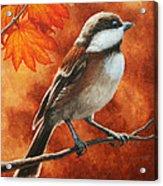 Autumn Chickadee Acrylic Print by Crista Forest