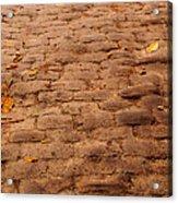 Autumn Cobble Stone Road II Acrylic Print