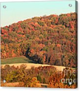Autumn Color On Rolling Hills Acrylic Print