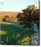 Autumn Color On Rolling Hills And Farmland Acrylic Print
