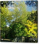 Autumn Colors 4 Acrylic Print