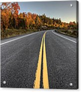 Autumn Colors And Road  Acrylic Print