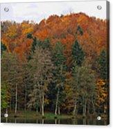 Autumn Colors Acrylic Print