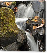 Autumn Colors On Big Crabtree Creek Acrylic Print