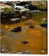 Autumn Colors On Little River Acrylic Print
