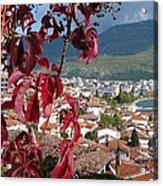 Autumn Colour - Ohrid - Macedonia Acrylic Print
